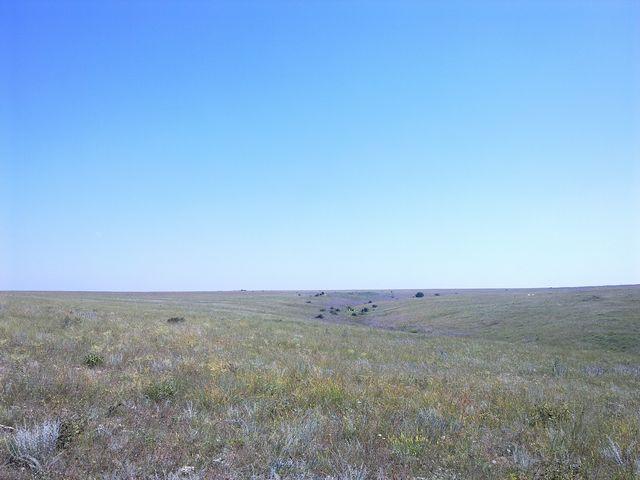 Крымские степи вблизи Оленевки