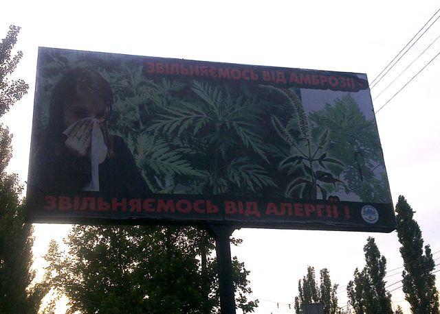 Местные плакаты