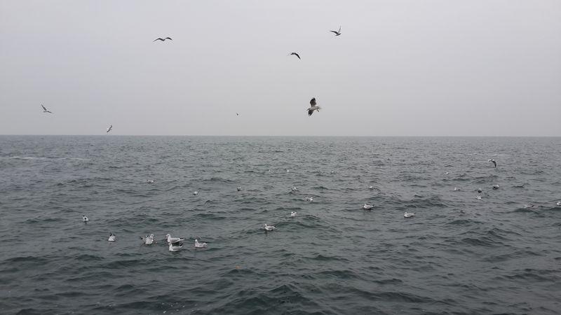 Одесса, море - Ланжерон