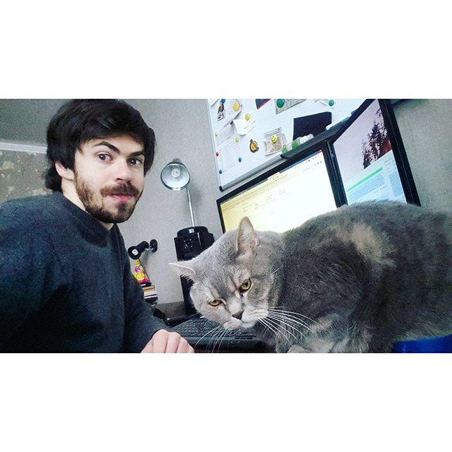 Котя сел на мышку и всё. Забрать - боюся) #кот